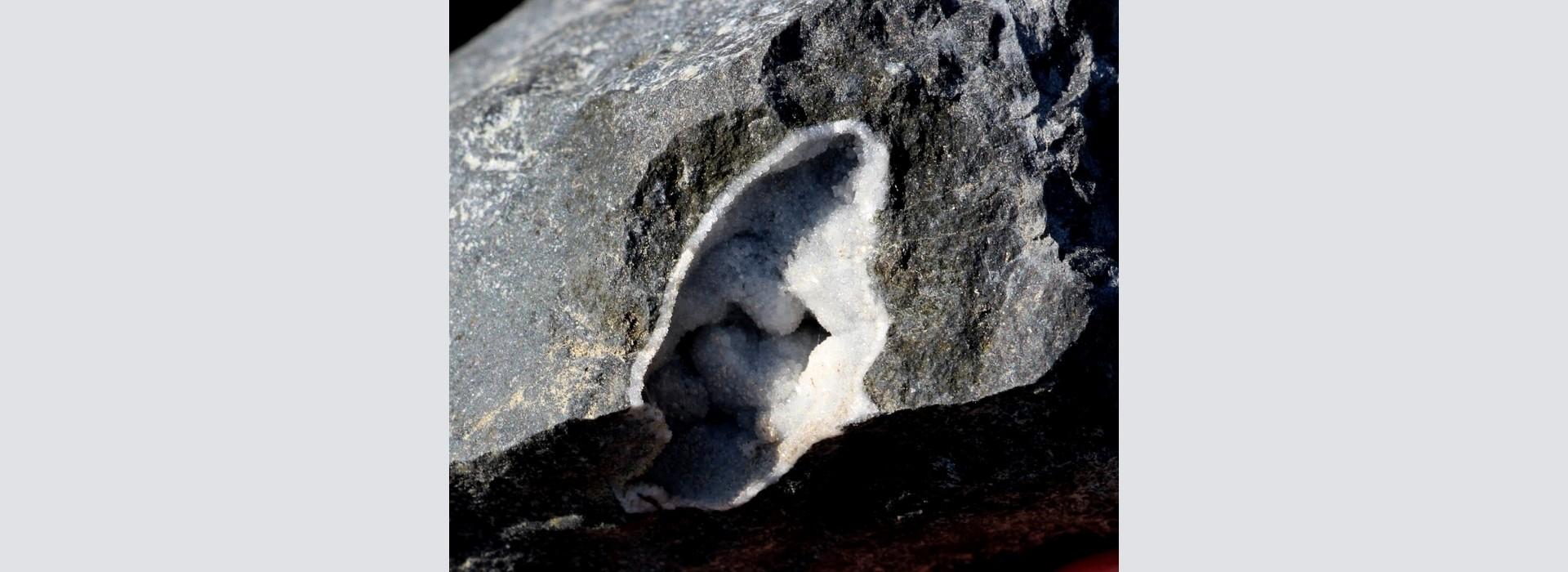 Sortida del GMC a la pedrera de Sant Corneli, Can Saboia, (Fogars de la Selva).