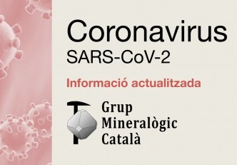 Información sobre COVID-19 (fase 1)