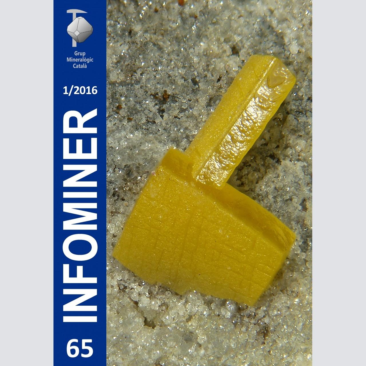 Infominer 65 (1/2016)