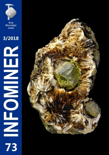 Infominer 73 (3/2018)