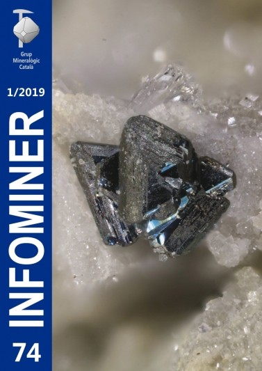 Infominer 74 (1/2019)
