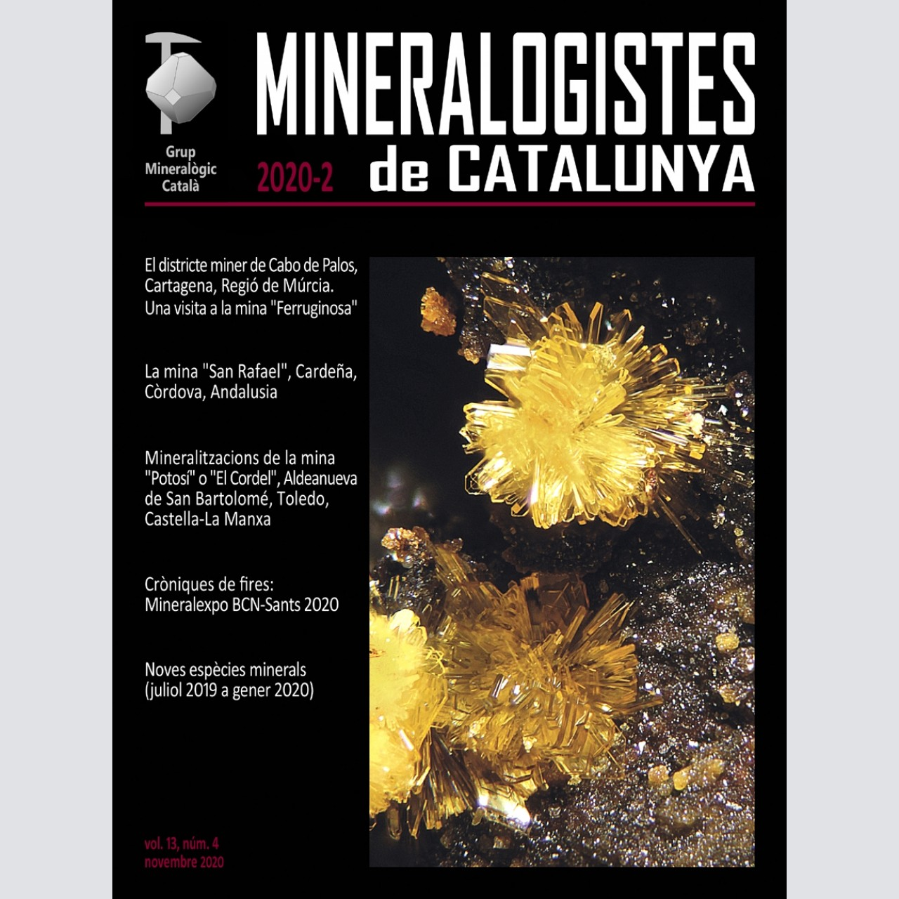 <em>Mineralogistes de Catalunya</em> (2020-2)