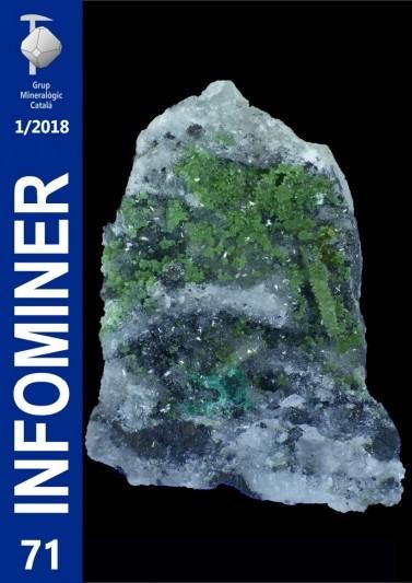 Infominer 71 (1/2018)